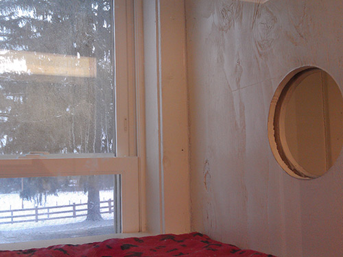 window in cat boarding room