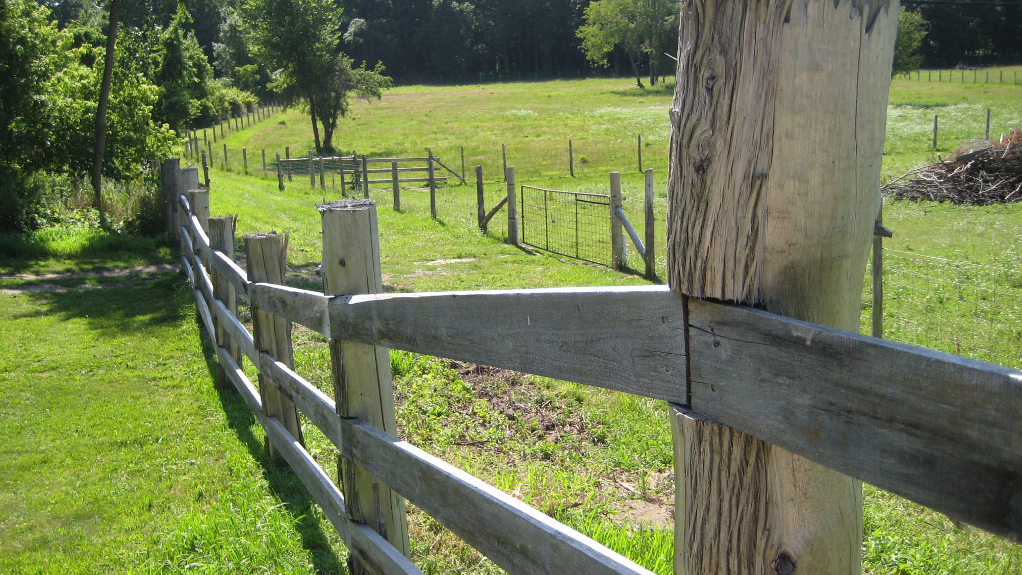 fence line and green field